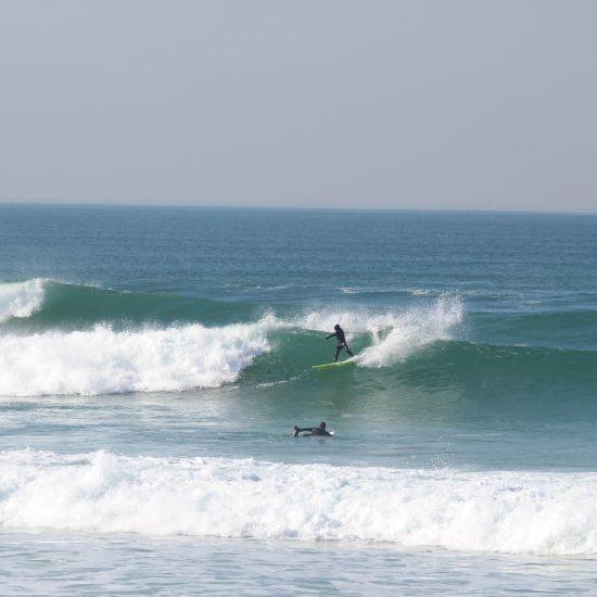 On vous coachera pendant votre session avec guide de surf. C'est le thème : trouver les bonnes vagues et vous coacher quelque soit votre niveau. Ici on travaille le carve frontside sur une gauche à manoeuvre.